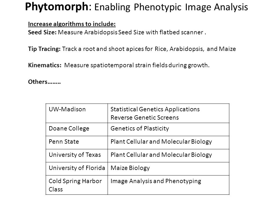 Phytomorph: Enabling Phenotypic Image Analysis