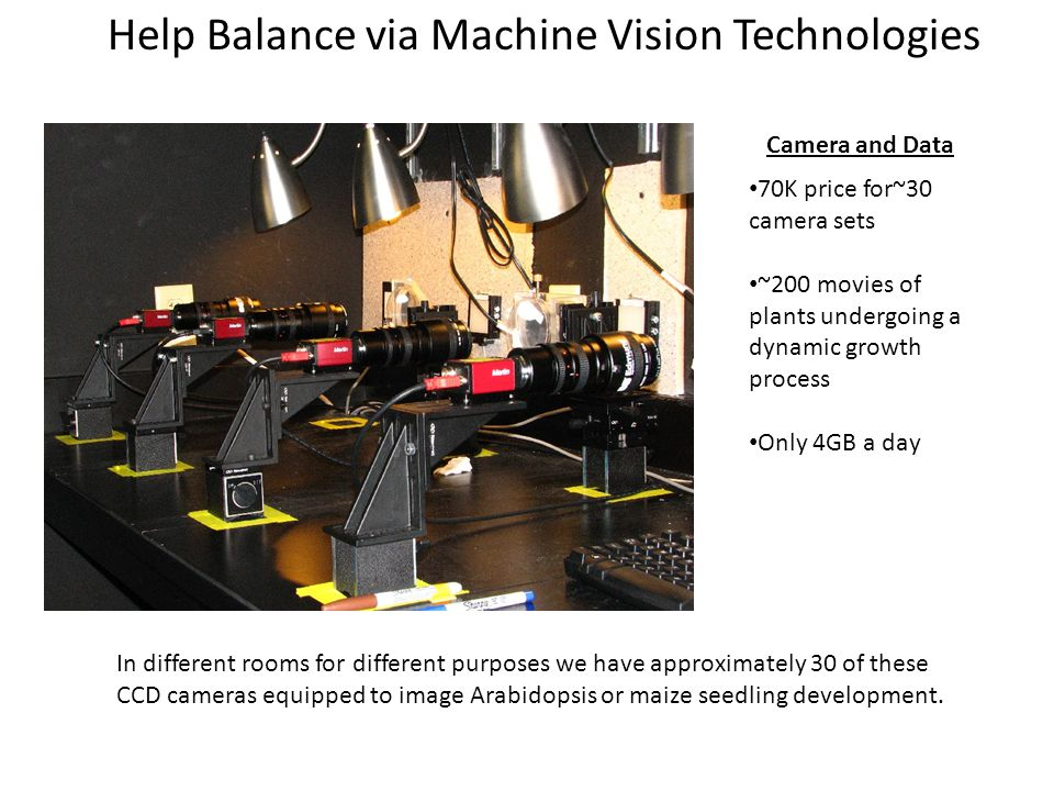 Help Balance via Machine Vision Technologies