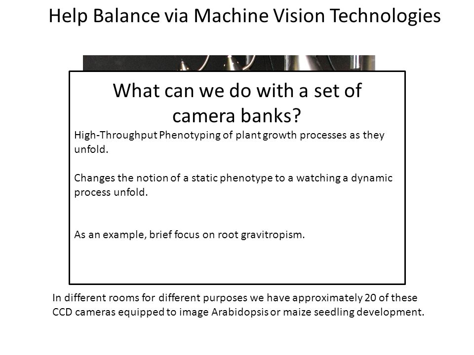 What can we do with a set of camera banks