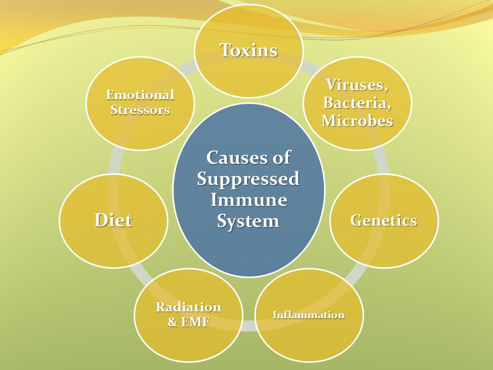 Causes of Suppressed Immune System Viruses, Bacteria, Microbes