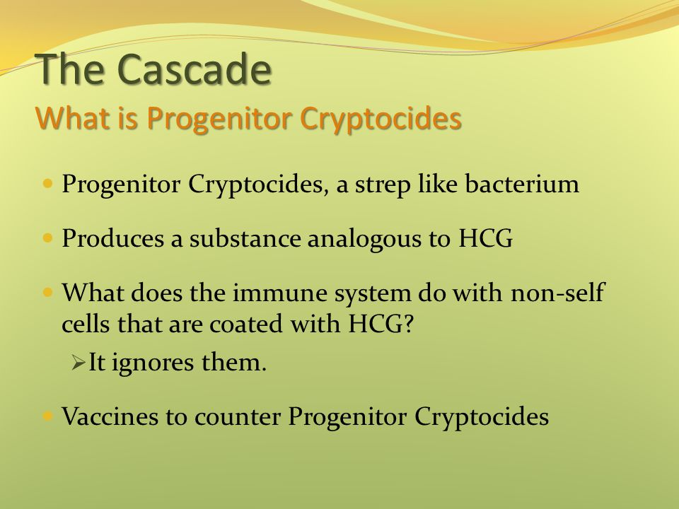The Cascade What is Progenitor Cryptocides