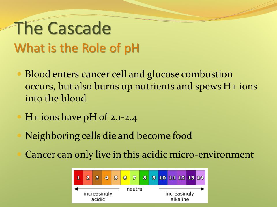 The Cascade What is the Role of pH