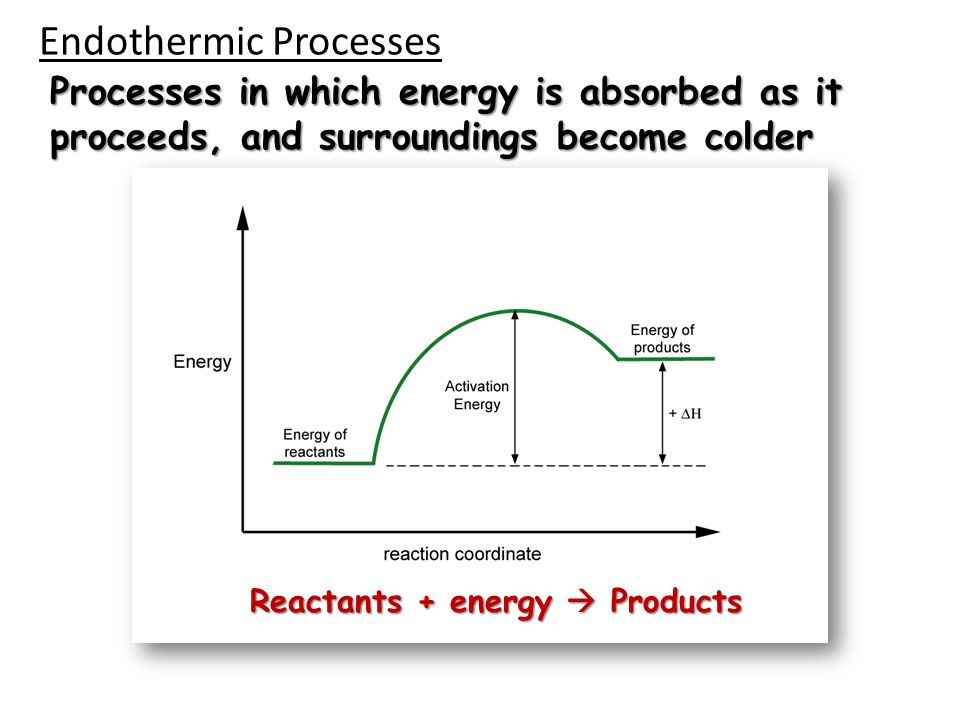 Endothermic Processes