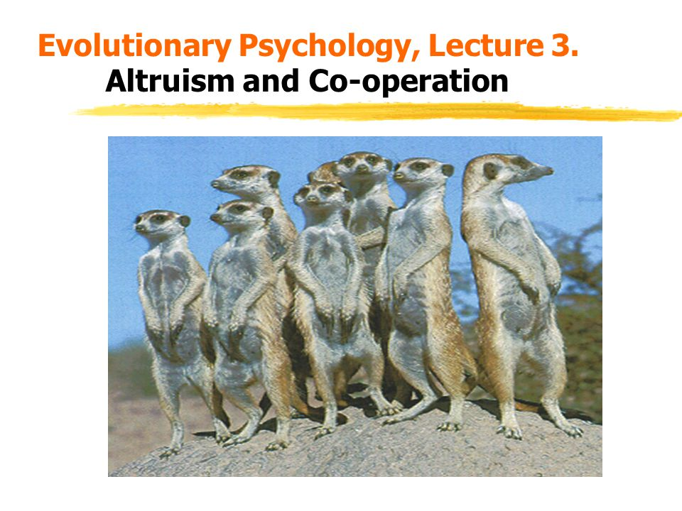 Evolutionary Psychology, Lecture 3. Altruism and Co-operation