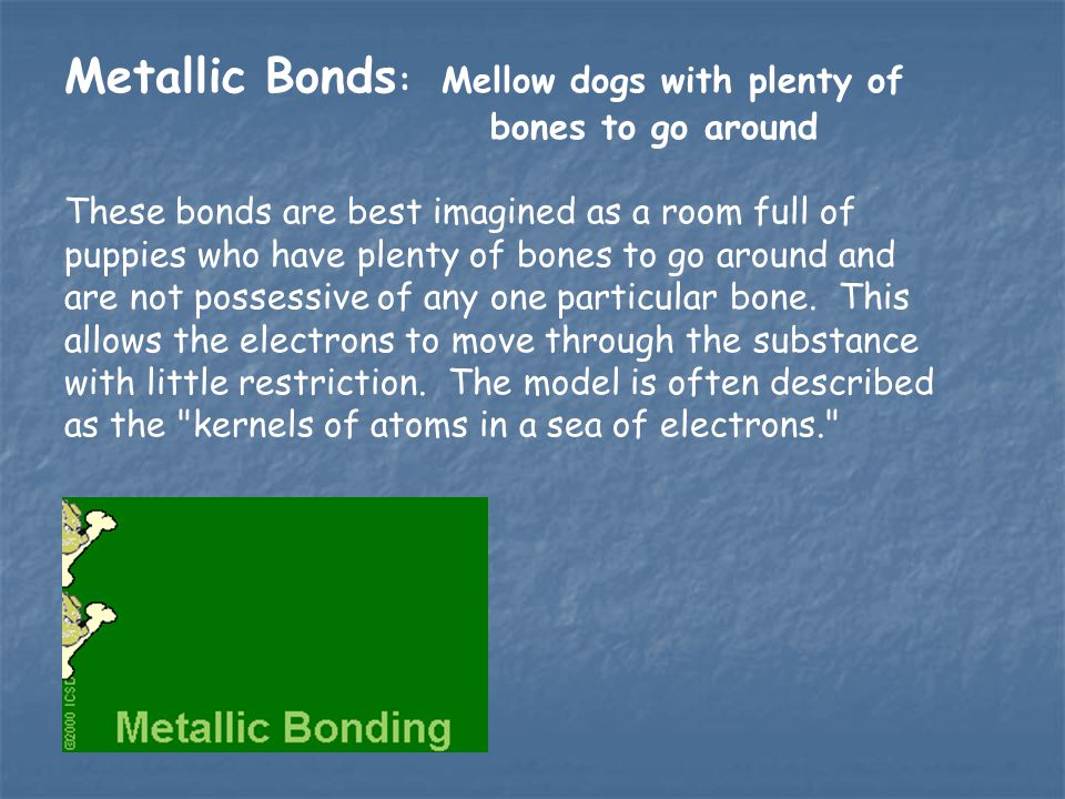 Metallic Bonds: Mellow dogs with plenty of bones to go around