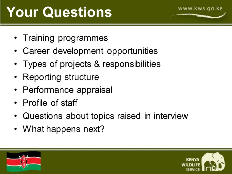 Your Questions Training programmes Career development opportunities