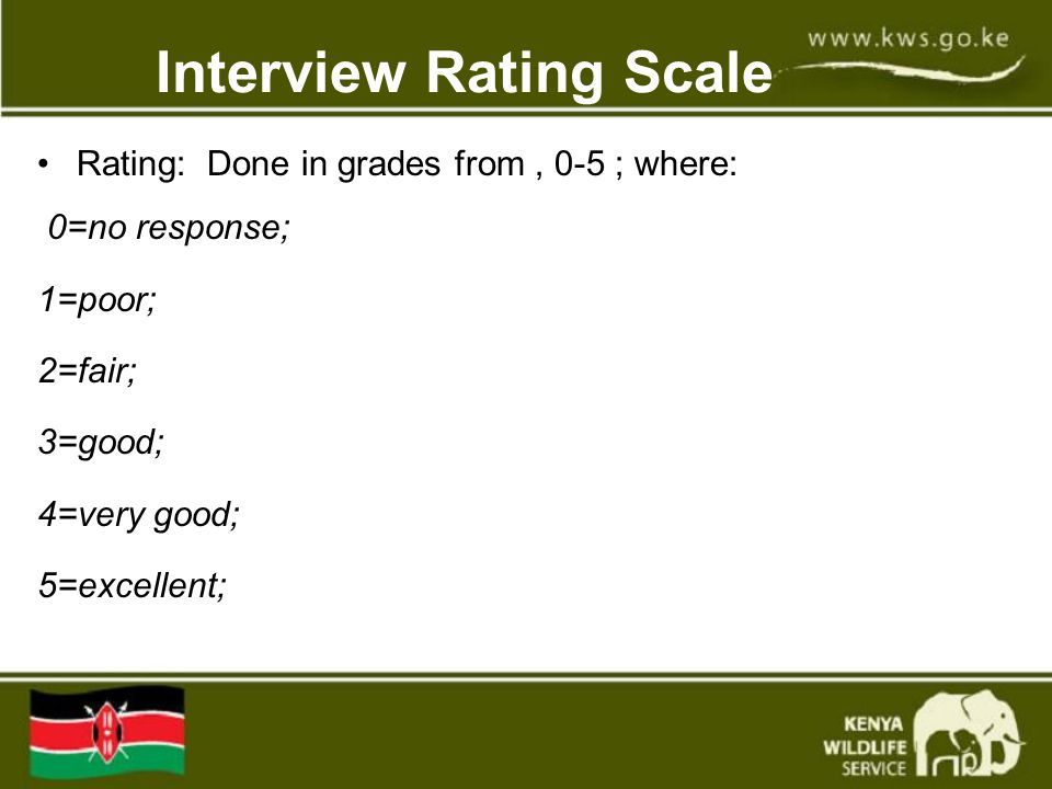 Interview Rating Scale