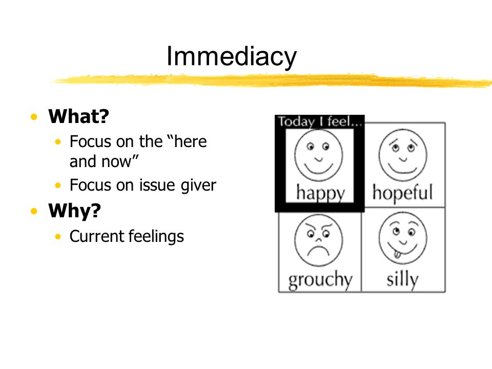 Immediacy What Why Focus on the here and now Focus on issue giver