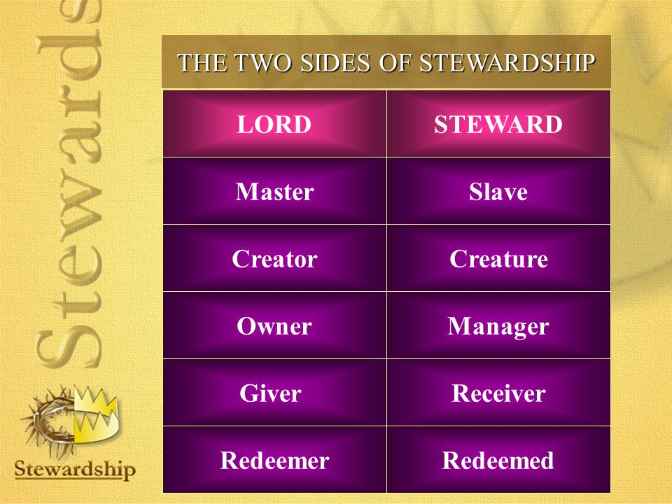 THE TWO SIDES OF STEWARDSHIP