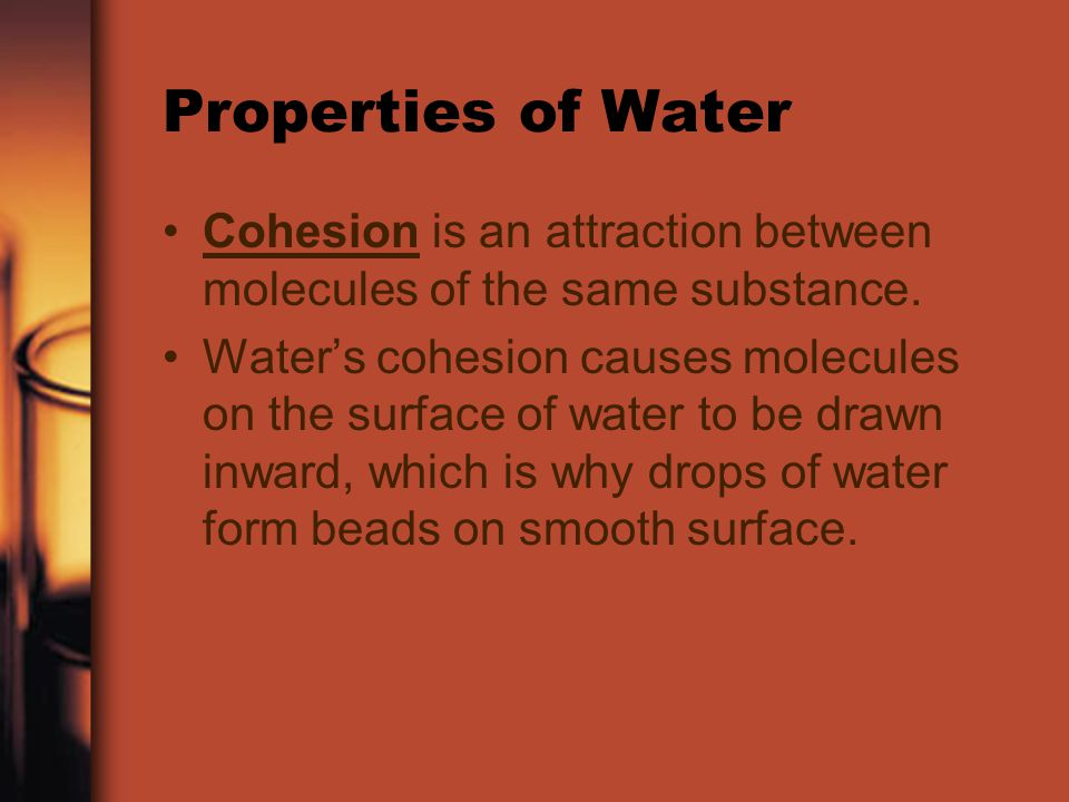 Properties of Water Cohesion is an attraction between molecules of the same substance.