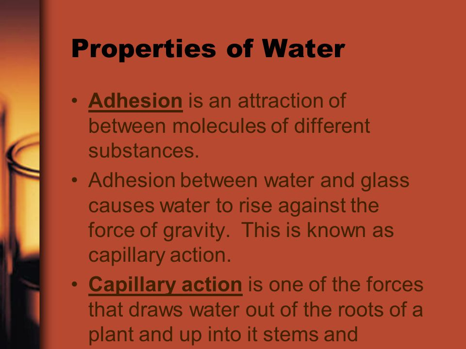 Properties of Water Adhesion is an attraction of between molecules of different substances.