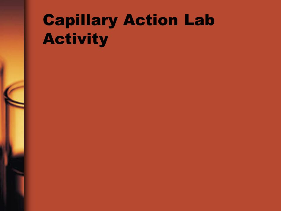 Capillary Action Lab Activity