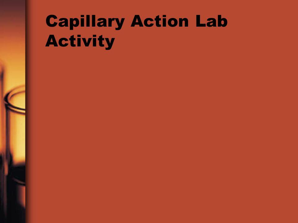 Capillary Action Lab Activity