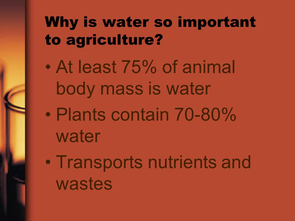 Why is water so important to agriculture