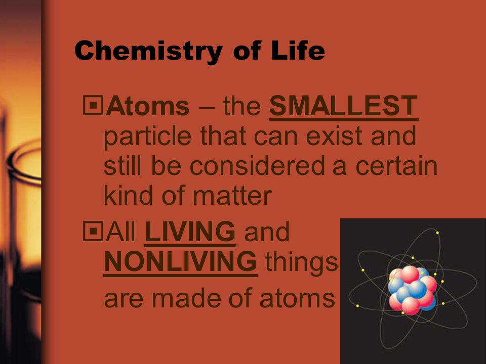 All LIVING and NONLIVING things are made of atoms