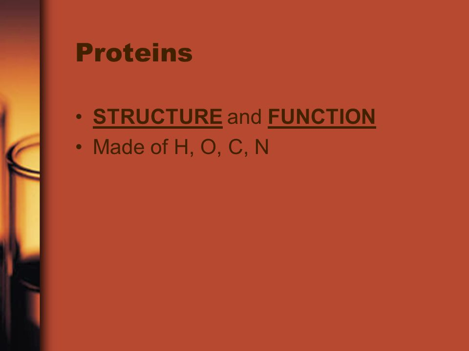 Proteins STRUCTURE and FUNCTION Made of H, O, C, N
