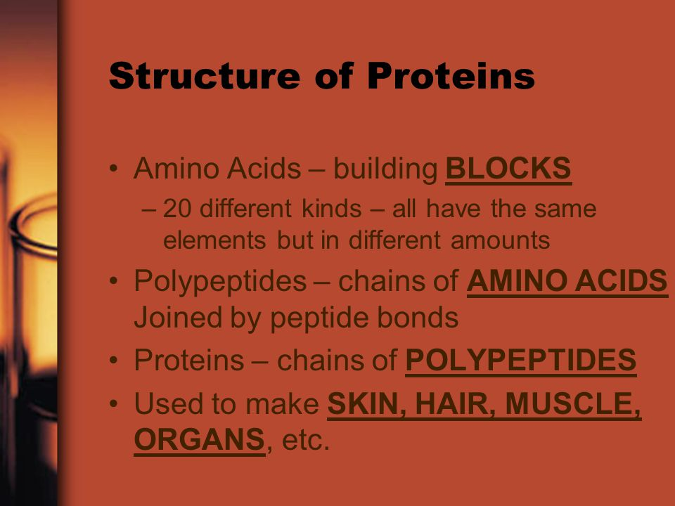 Structure of Proteins Amino Acids – building BLOCKS