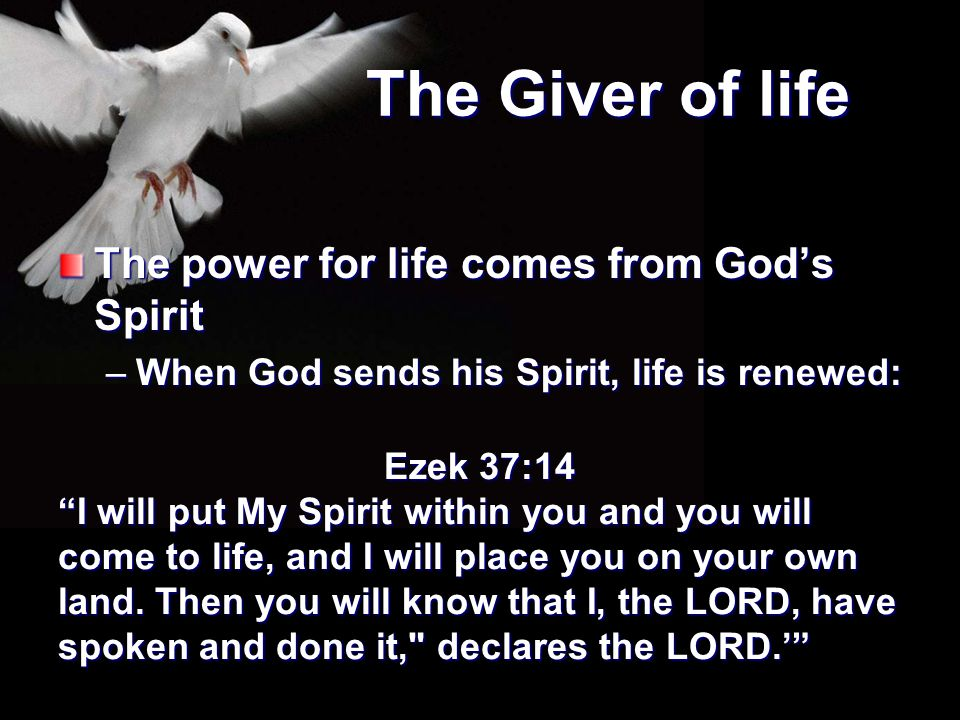 The Giver of life The power for life comes from God's Spirit