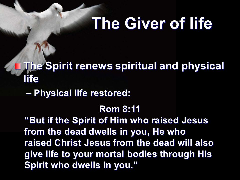 The Giver of life The Spirit renews spiritual and physical life
