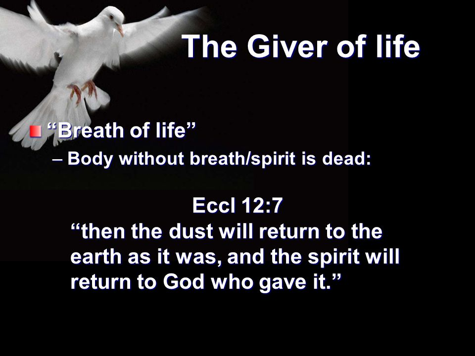 The Giver of life Breath of life Eccl 12:7