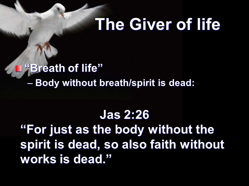 The Giver of life Breath of life Body without breath/spirit is dead: Jas 2:26.
