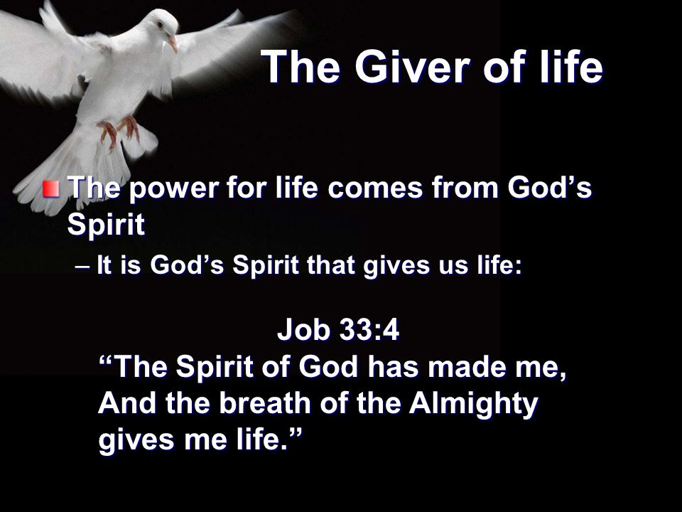 The Giver of life The power for life comes from God's Spirit Job 33:4