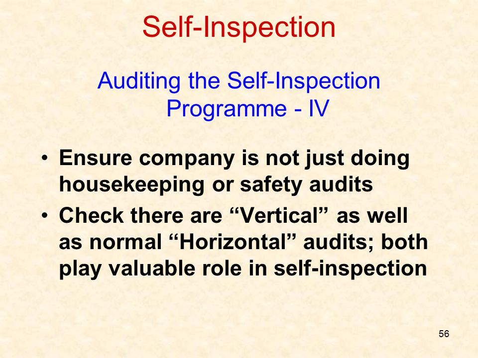 Auditing the Self-Inspection Programme - IV