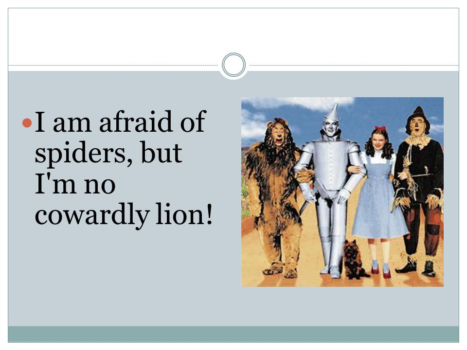 I am afraid of spiders, but I m no cowardly lion!