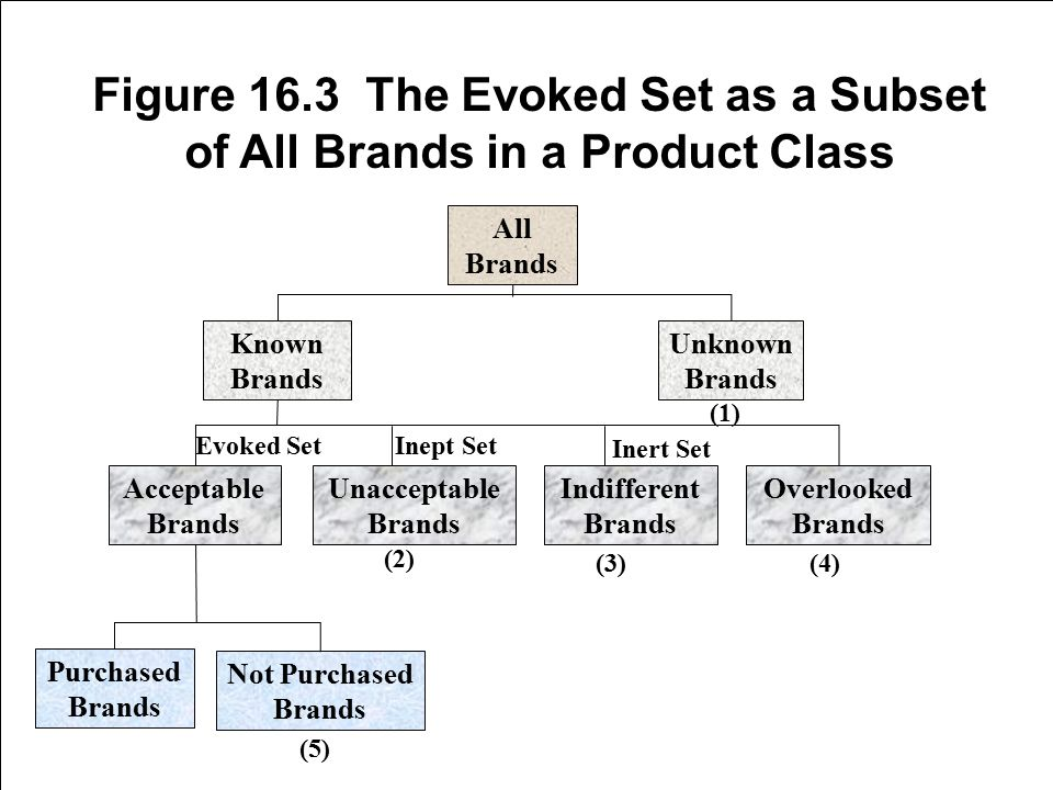 Figure 16.3 The Evoked Set as a Subset of All Brands in a Product Class