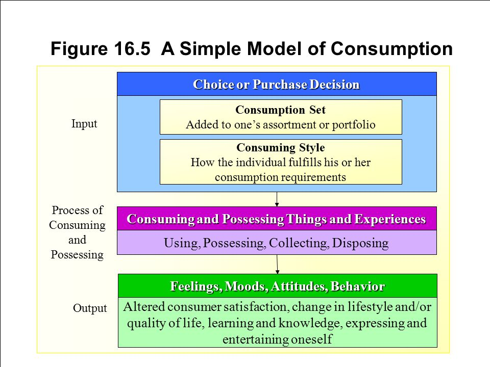 Figure 16.5 A Simple Model of Consumption