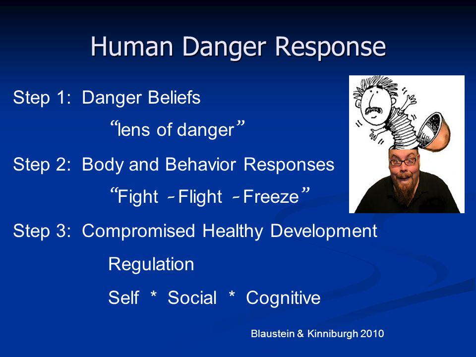 Human Danger Response Step 1: Danger Beliefs lens of danger