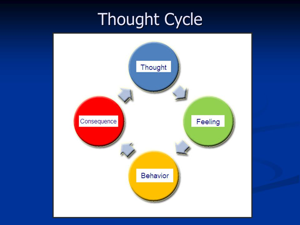Thought Cycle 28