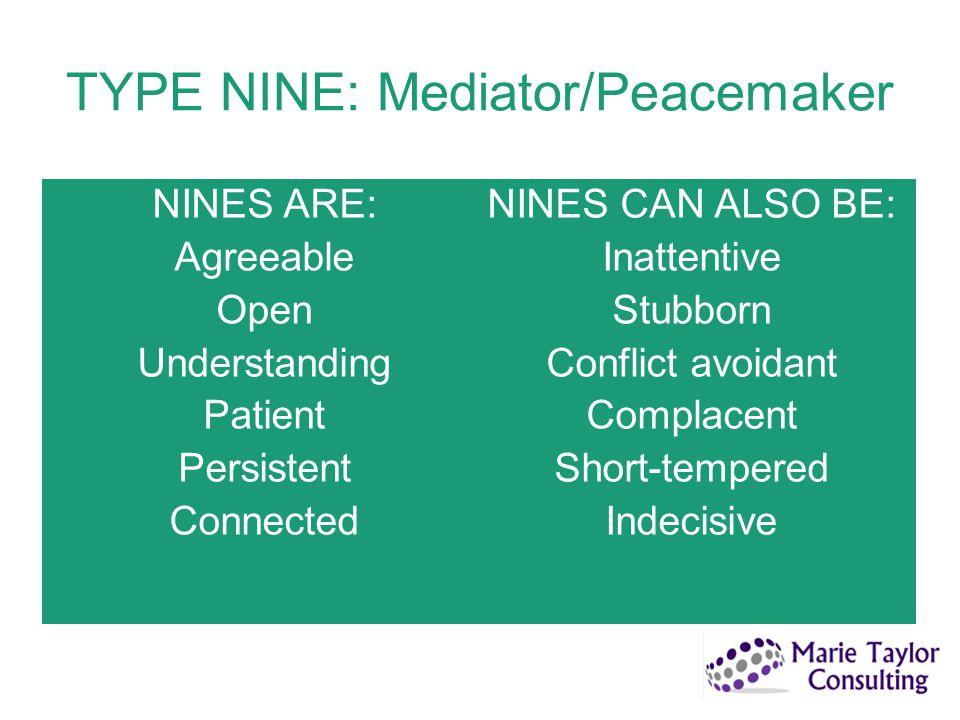 TYPE NINE: Mediator/Peacemaker