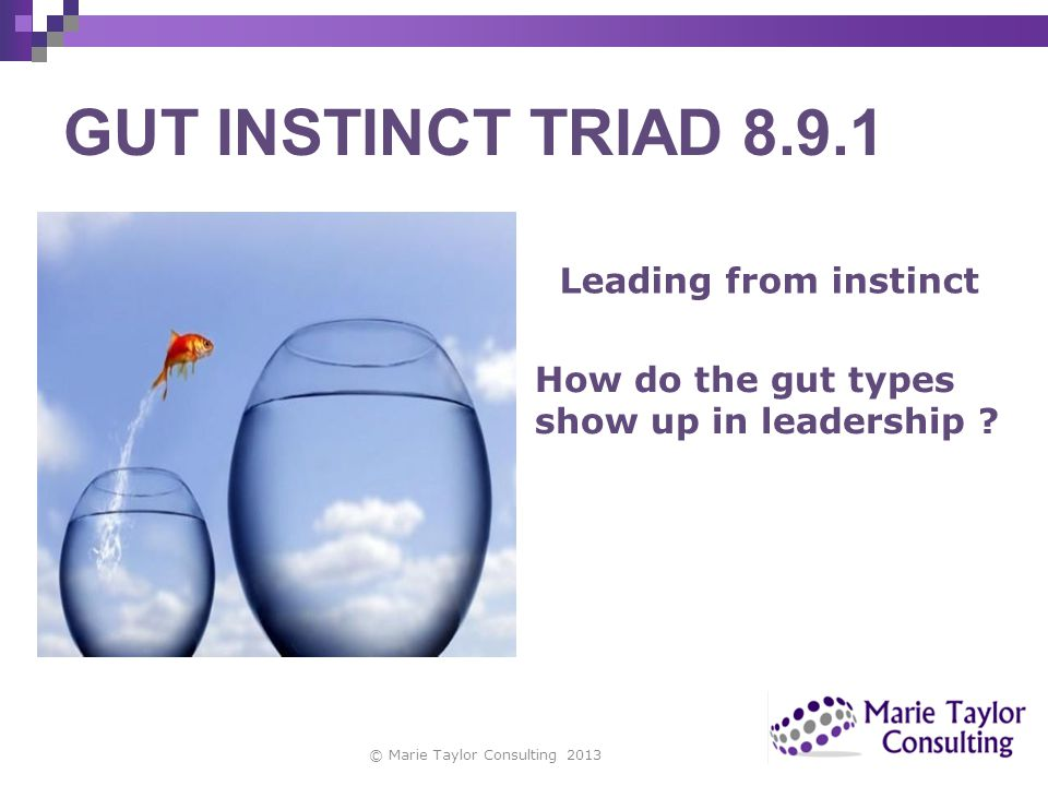 GUT INSTINCT TRIAD 8.9.1 Leading from instinct How do the gut types