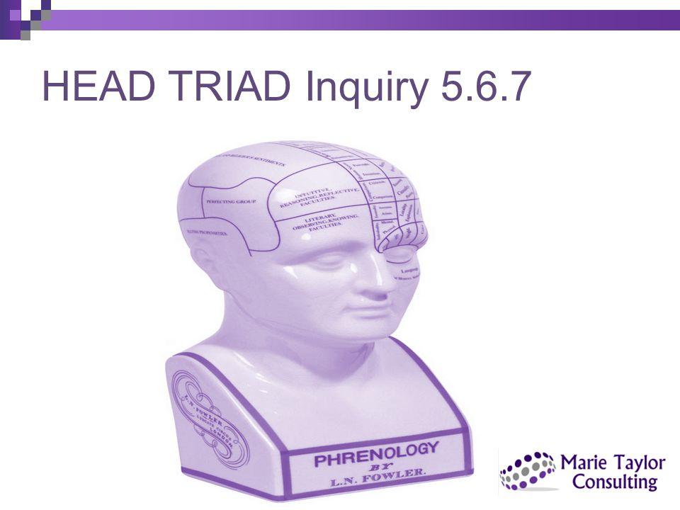 HEAD TRIAD Inquiry 5.6.7 copyright Marie Taylor