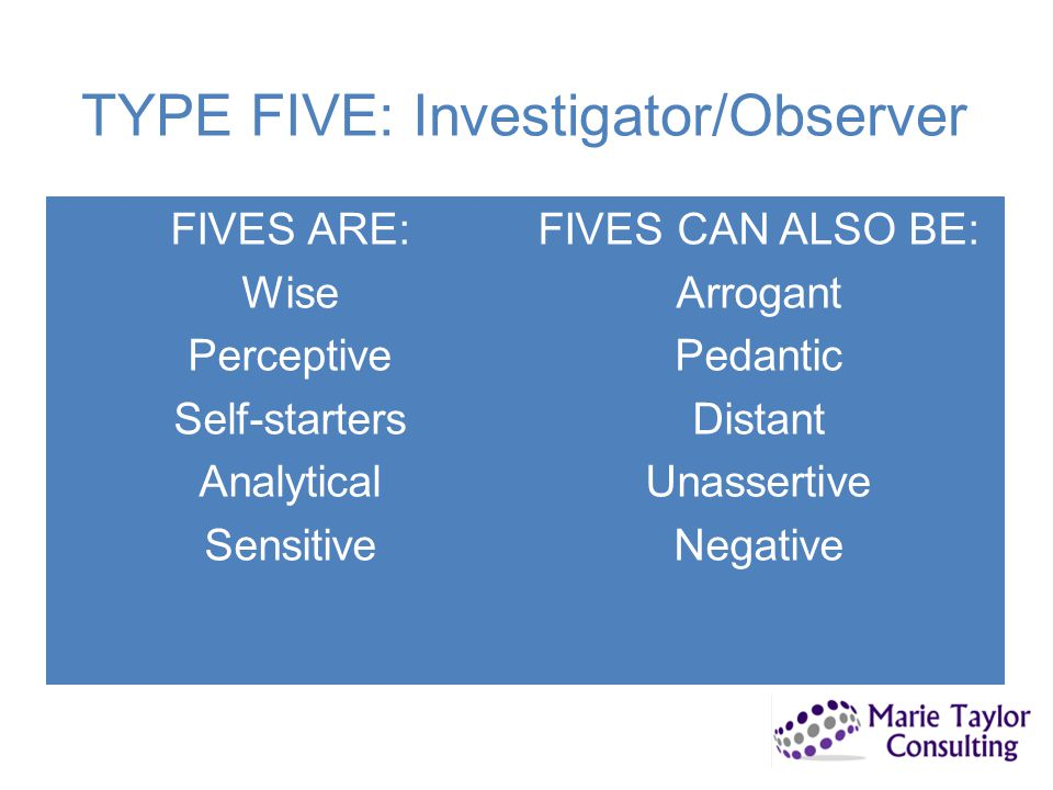 TYPE FIVE: Investigator/Observer