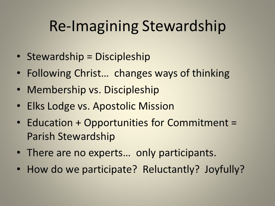 Re-Imagining Stewardship
