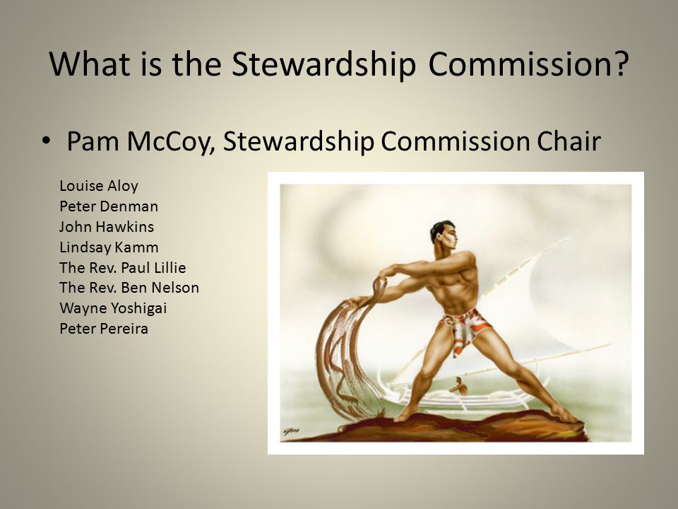 What is the Stewardship Commission
