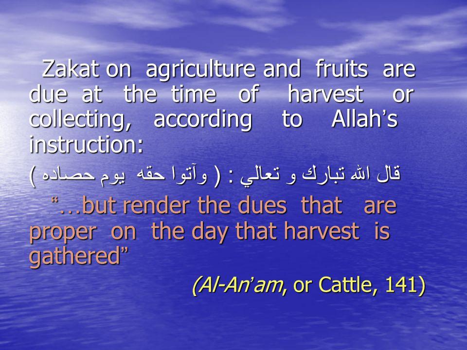 قال الله تبارك و تعالي : ( وآتوا حقه يوم حصاده )