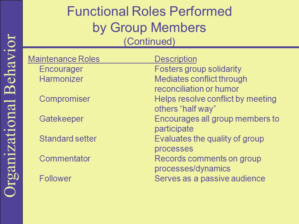 Functional Roles Performed by Group Members (Continued)