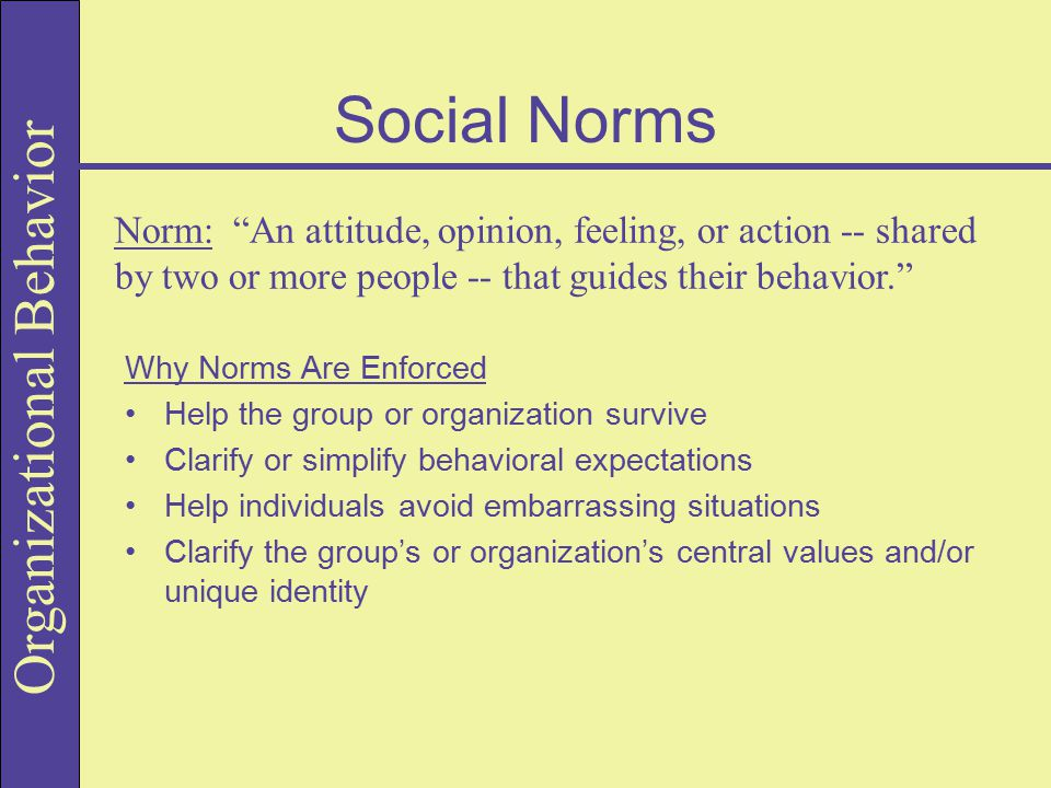 Social Norms Norm: An attitude, opinion, feeling, or action -- shared by two or more people -- that guides their behavior.