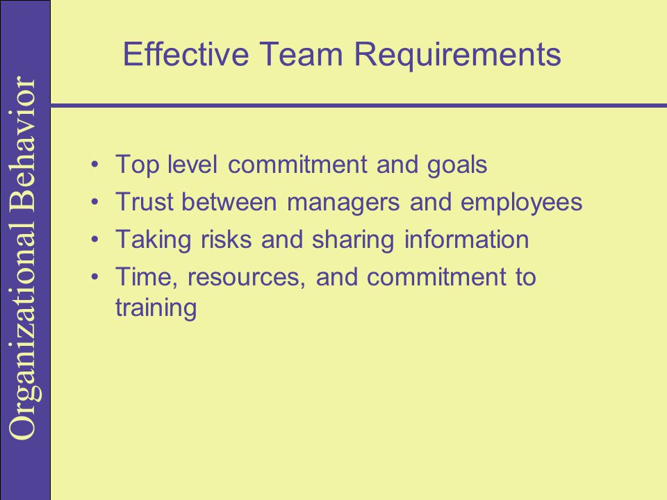 Effective Team Requirements