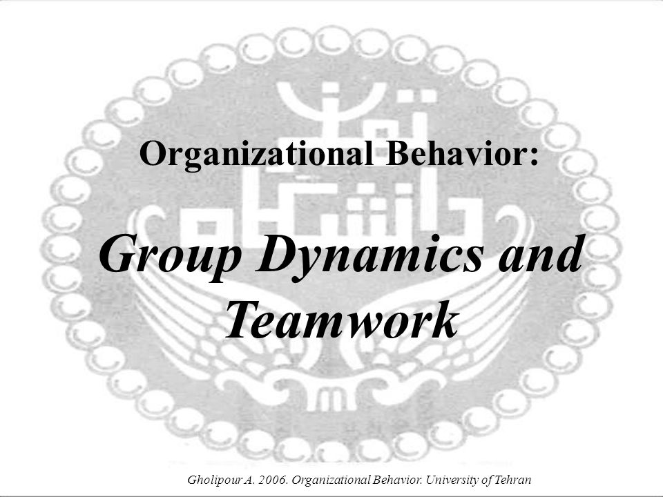 Organizational Behavior: Group Dynamics and Teamwork
