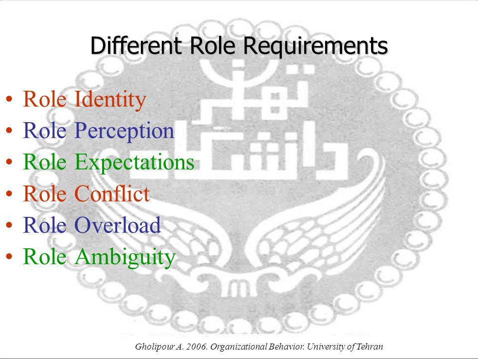 Different Role Requirements