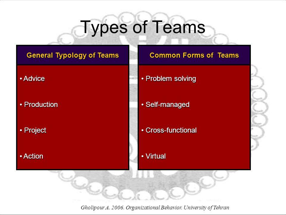General Typology of Teams