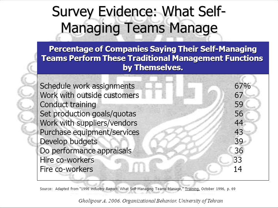Survey Evidence: What Self-Managing Teams Manage