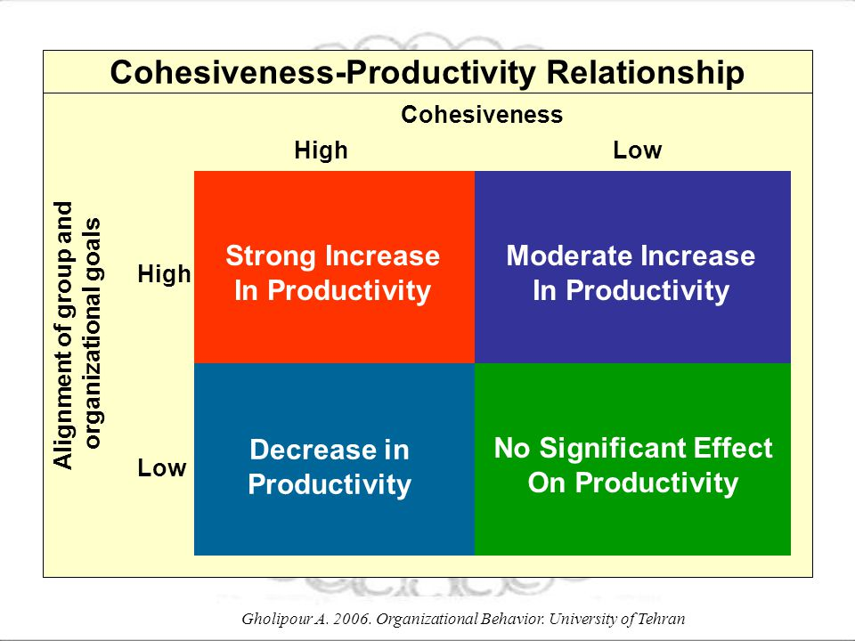 Cohesiveness-Productivity Relationship