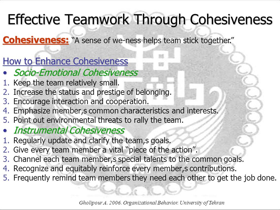 Effective Teamwork Through Cohesiveness