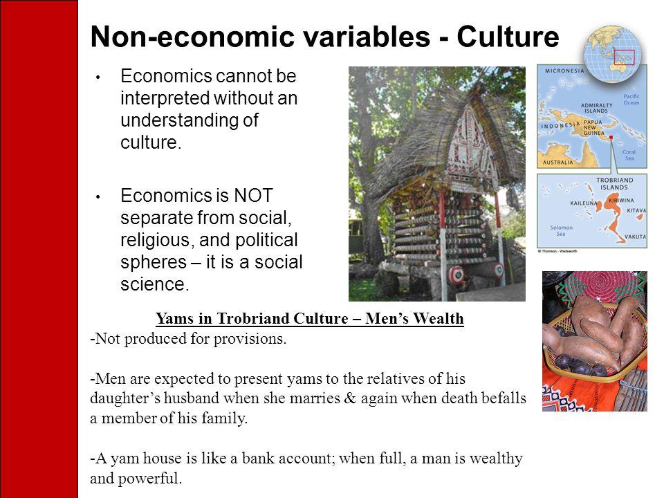 Non-economic variables - Culture