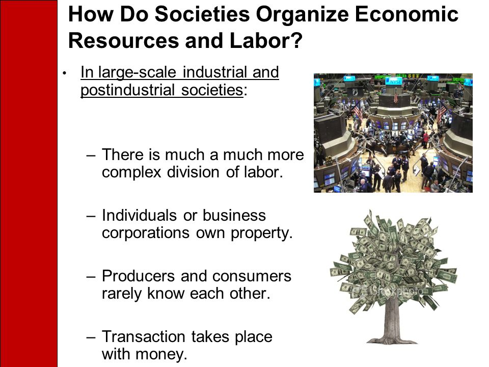 How Do Societies Organize Economic Resources and Labor